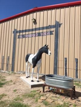 McCamey Borrowed Horse