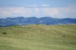 Reno-Benteen Battlefield
