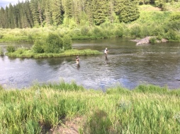 Fly Fishing Henrys Fork Snake River