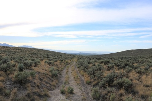 Oregon Trail Ruts