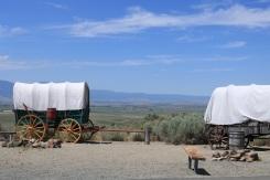 Wagon Campsite